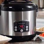 5 meilleurs cuiseurs à riz en acier inoxydable (avis de 2020)
