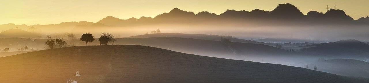 panoramique, ferme, le matin