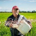 Rice Cooker Zojirushi France : Avis et Prix sur Amazon