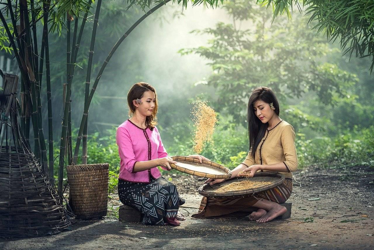 rice, women, sitting