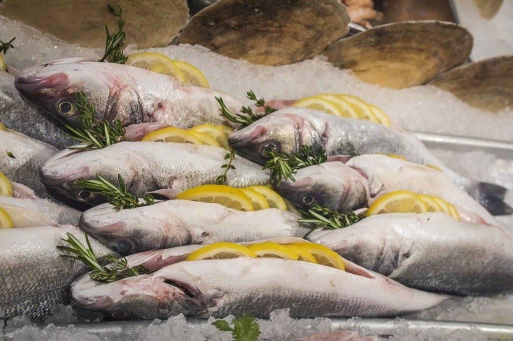 poissons, premières, morts