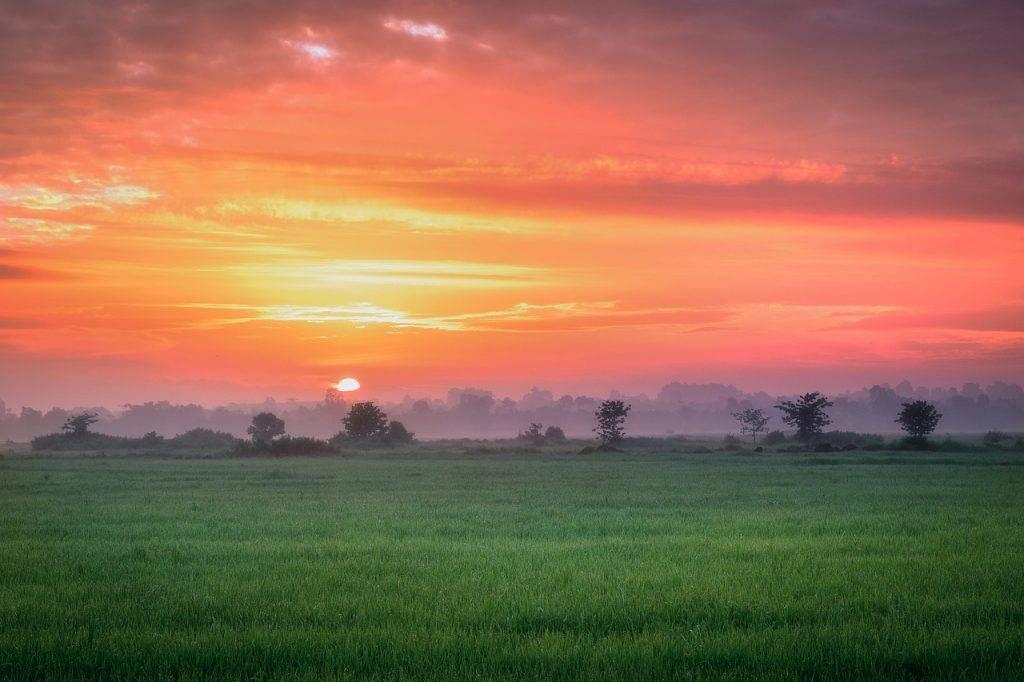 lever du soleil, coloré ciel, matin