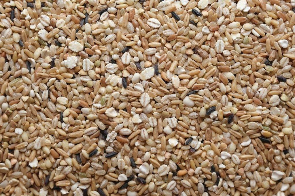 cinq grains de riz, alimentaire, en bonne santé