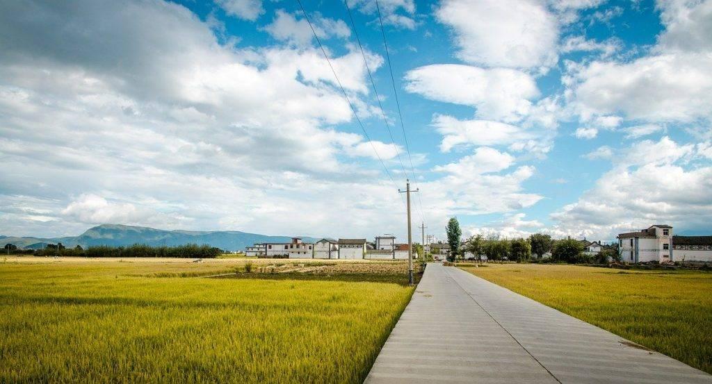 road, dans le champ de riz, ciel bleu et nuages blancs