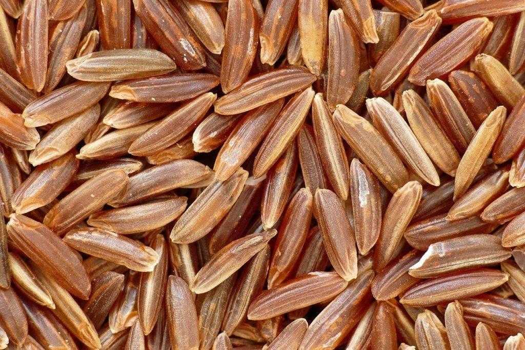 rouge de riz de camargue, spitzenreis, le riz brun
