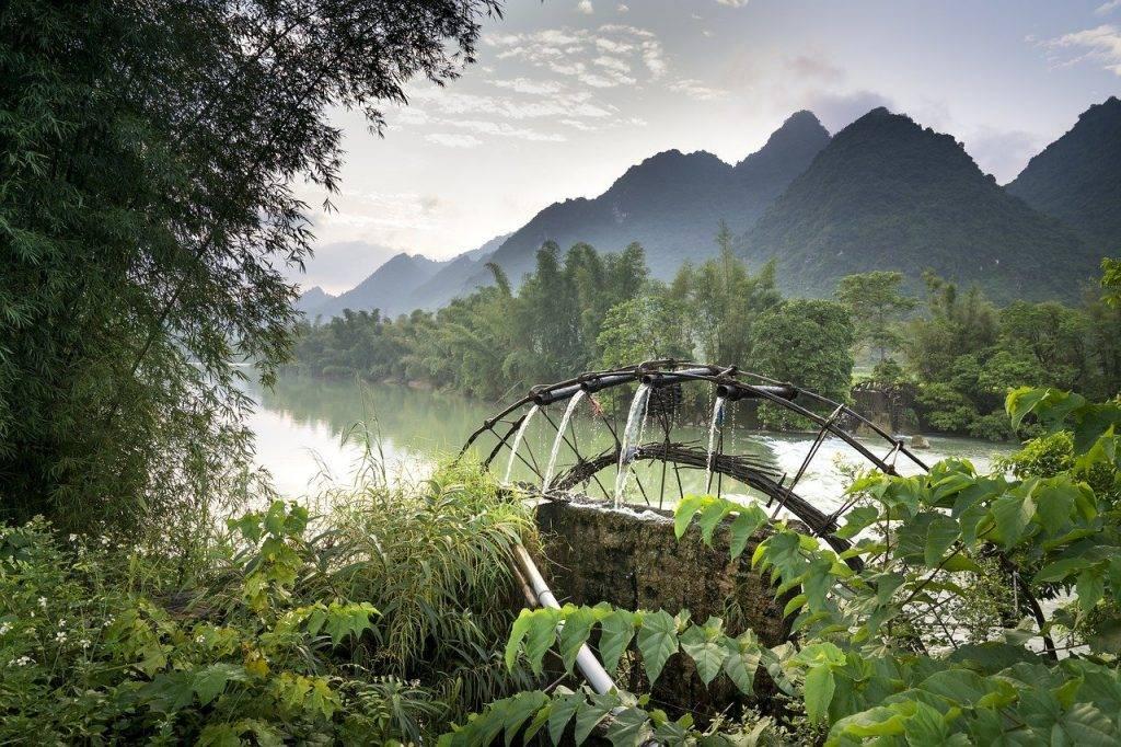 agriculture, l'asie, beauté