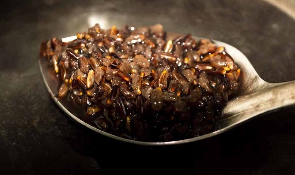 riz noir, alimentaire, tona ferme biologique