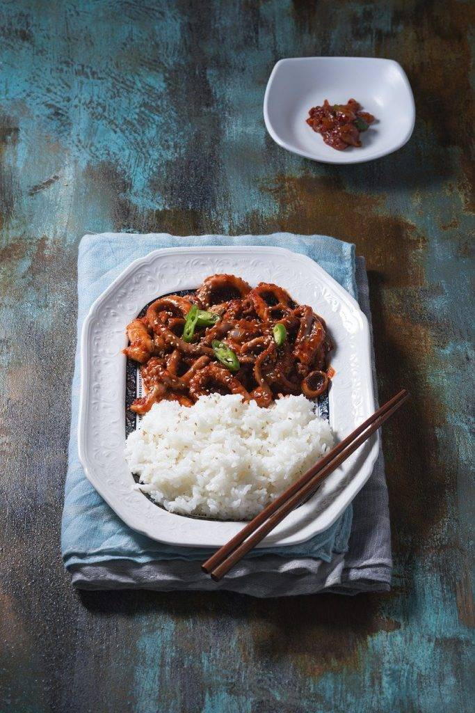 poulpe, alimentaire, riz frit