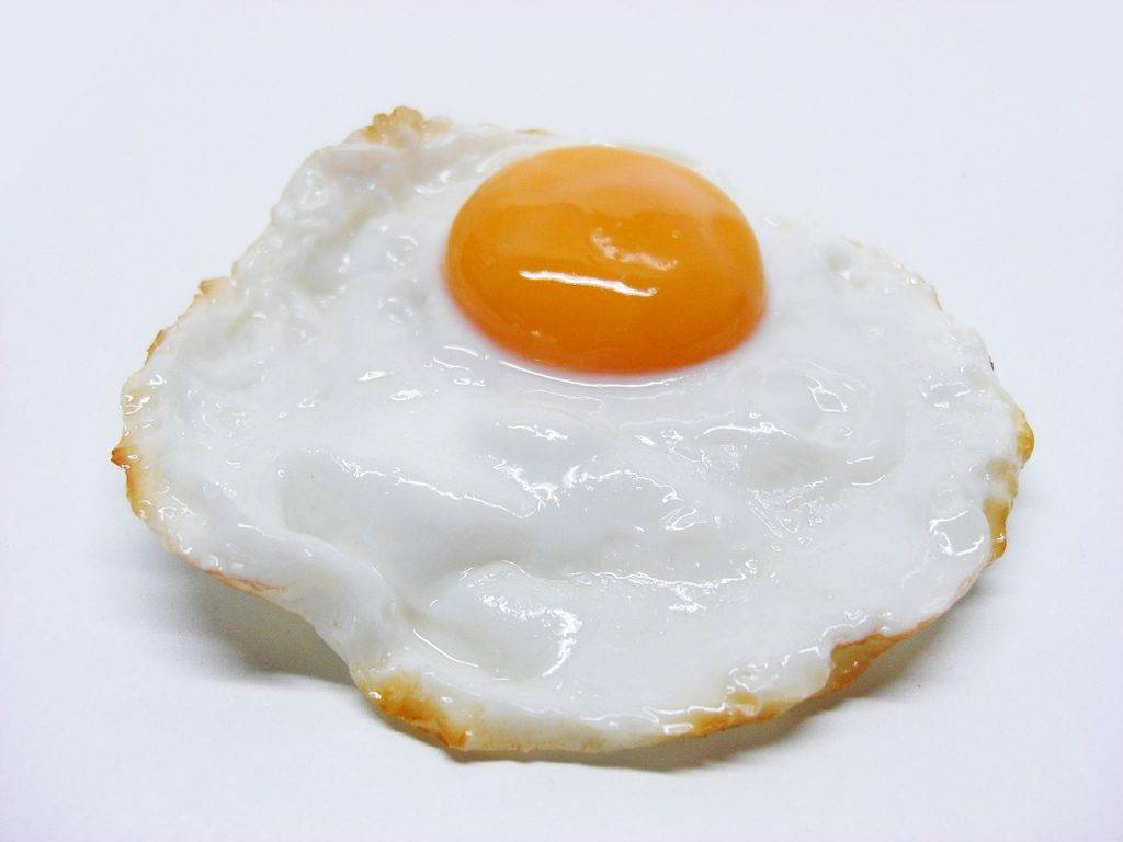 frit, oeufs, oeuf