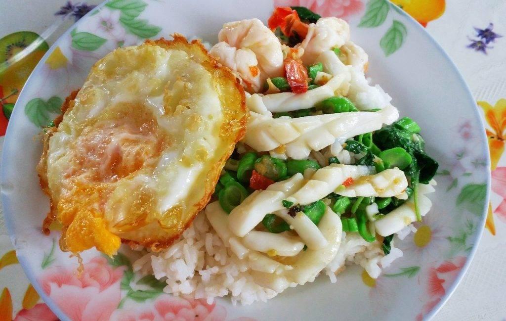 nourriture, plat, riz
